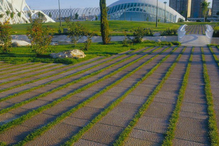 Ciudad de las Artes y las Ciencias - Proyecto Pavimentos Guillen